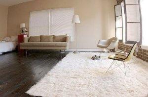 fluffy shag carpet
